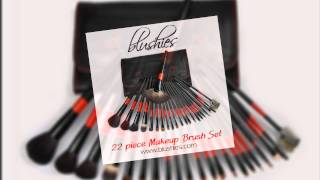 Blushies 22 Piece Makeup Brush Set - Professionally Look and Save More