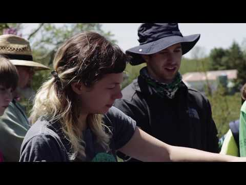 College of the Atlantic Courses: Bees and Society - YouTube