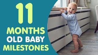 11 Months Old Baby Milestones