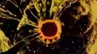 The Strokes-Machu picchu (music video)