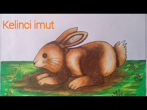 Cara Menggambar Kelinci Yang Mudah Mewarnai Dengan Gradasi Crayon