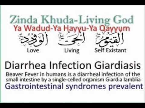 Giardiasis ciszták kezelése