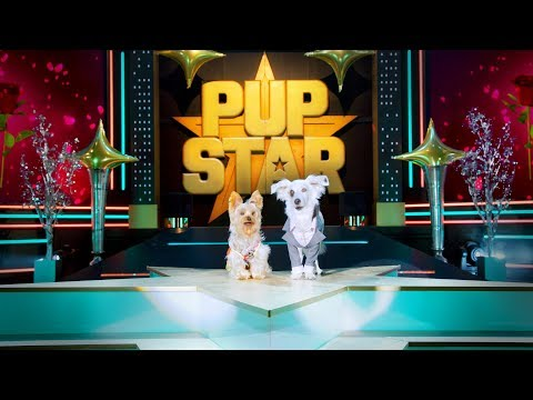 Pup Star: World Tour online