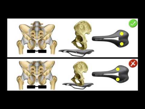 Massaggio prostatico sano