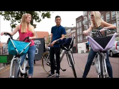 Yepp Cargo Flexx fietsmand