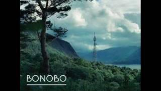 "Video thumbnail of ""Bonobo - Kong"""
