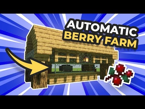 MUST HAVE Starter Automatic Berry Farm in Minecraft 1.14+