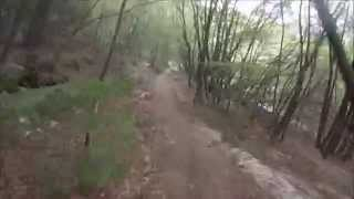 Passo Rocchetta: Downhill to Palaer Forest Road (a vid by supertrailhunter).