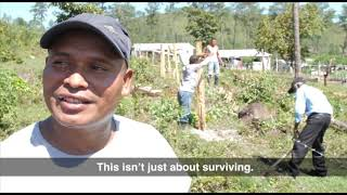 Video: Village Building