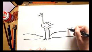 Como dibujar un Avestruz - dibujos para niños
