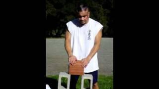 SOKE GRANDMASTER IRVING SOTO IRON HANDS 10TH DEGREE BLACK BELT ATEMI AIKI JUJITSU