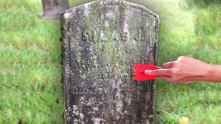 This Person Cleans Graves
