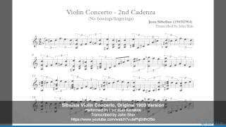Michael Ludwig Explores Sibelius Violin Concerto (2 22 MB