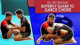 Butterfly Guard | Attacking the Darce choke | Jiu Jitsu technique