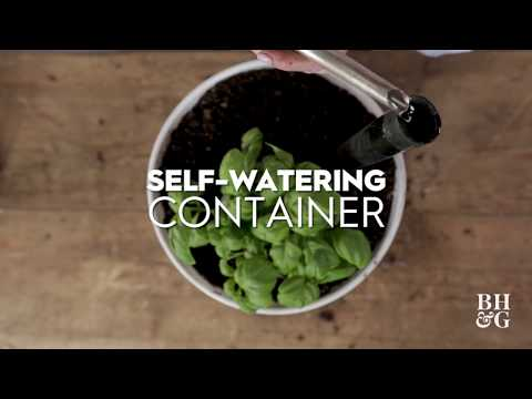 Self-Watering Container | Made by Me-Garden | Better Homes & Gardens