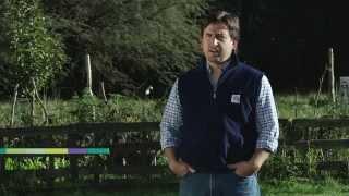 preview picture of video 'Huerta orgánica familiar: producción de abono casero'