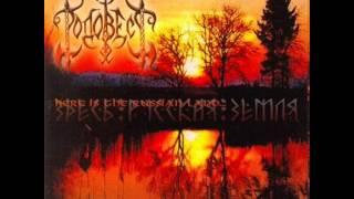 RODOVEST - The Gates of Heaven (ABSURD cover)