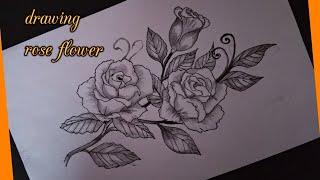 3000 Gambar Bunga Mawar Arsiran Gratis Infobaru