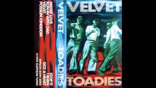 Toadies - Mister Love (1992/1993)