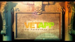 The Vet App | Sands Of Time