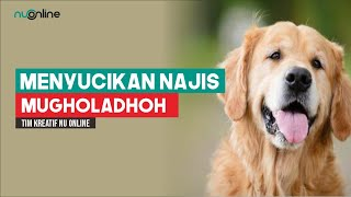 Tata Cara Menyucikan Najis dari Anjing atau Babi