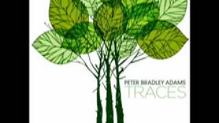 Peter Bradley Adams - For You.mov