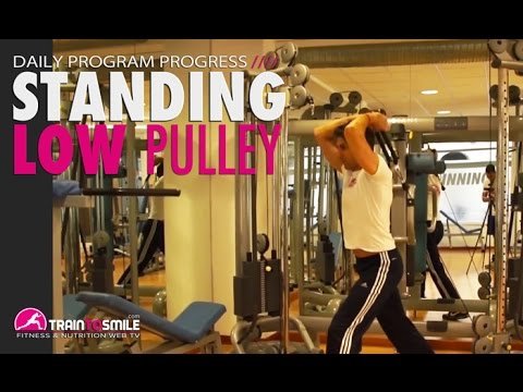 Standing Low Pulley Overhead Tricep Extension