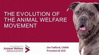 Evolution of the Animal Welfare Movement - conference recording