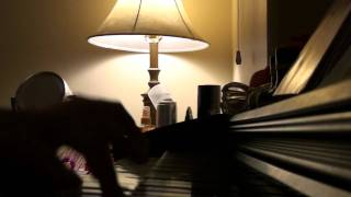 Keep Breathing, Ingrid Michaelson Piano Cover