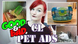 Munchie Talk | Discussing Good And Bad Craigslist Pet Ads