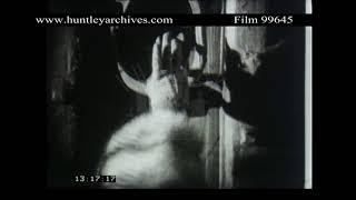 Woman's hand bangs door knocker.  Archive film 99645