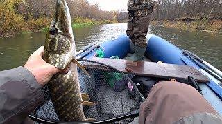 Передача про рыбалка ловля щуки осенью