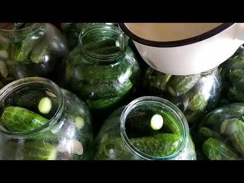 Маринованные сладкие огурчики, видео рецепт))
