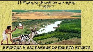 Природа и население Древнего Египта (рус.) История древнего мира.
