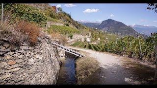 Valais: trésors des vignes au pays des montagnes Video Preview Image