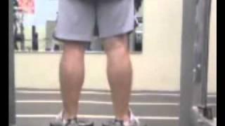 Typical Leg Workout