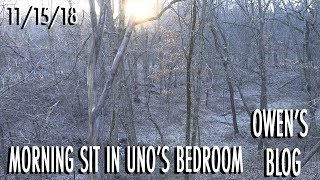 Owen's Blog: Morning Sit In Uno's Bedroom