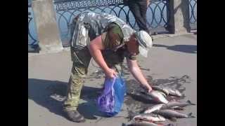 Рыбалка на волге в самаре с берега