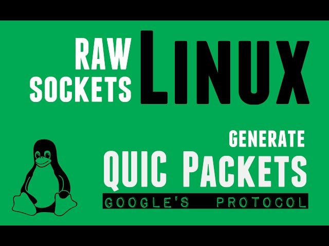 Videos :: Linux (user-space) RAW Socket Programming