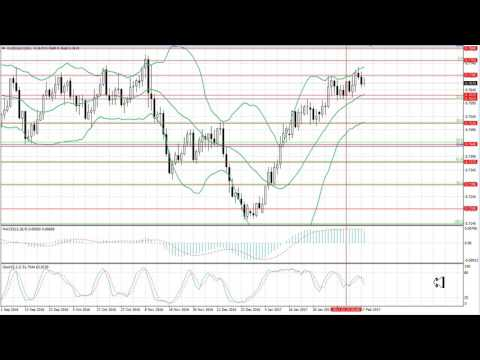 Weekly Forex forecast 20-24.02.2017: EUR/USD, GBP/USD, USD/JPY, AUD/USD, Gold