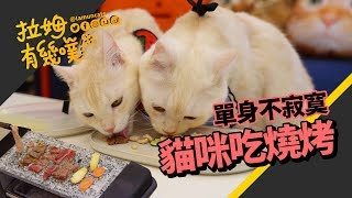 BBQ with cats, Happy Moon Festival! LAMUNCATS ♧