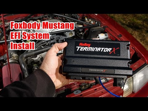 Foxbody Mustang Holley Terminator X Install