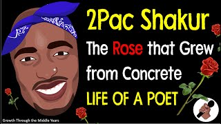 2Pac: The Rose that Grew from Concrete (Context)