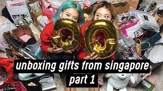 Unboxing Huge Gifts from Singapore Meet & Greet - Part 1 | DTV #53