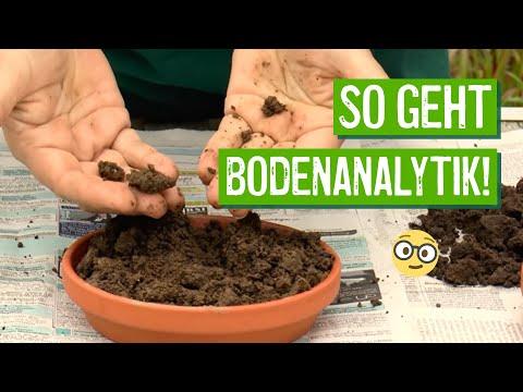 Einfache Bodenanalyse - Der Grüne Tipp