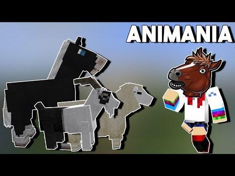 Animania все видео по тэгу на igrovoetv online