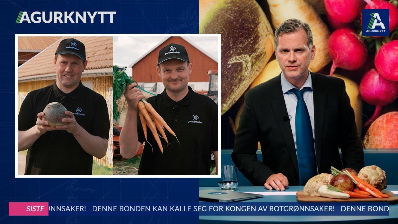 Denne bonden kan kalle seg for kongen av rotgrønnsaker!