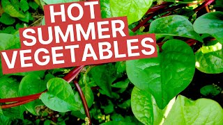Summer Vegetables to Grow in your Florida Vegetable Garden   Beat the Heat in your Summer Garden