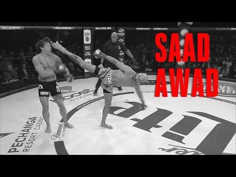 Bellator 201: Best Of – Saad Awad