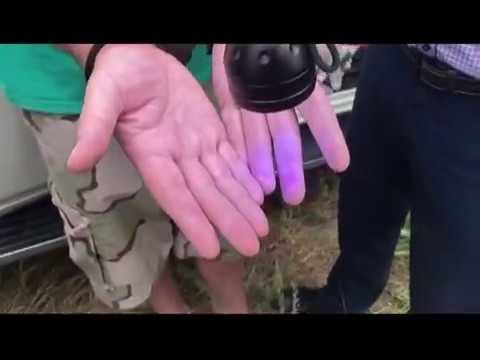 Появилось видео задержания начальника новокуйбышевской колонии